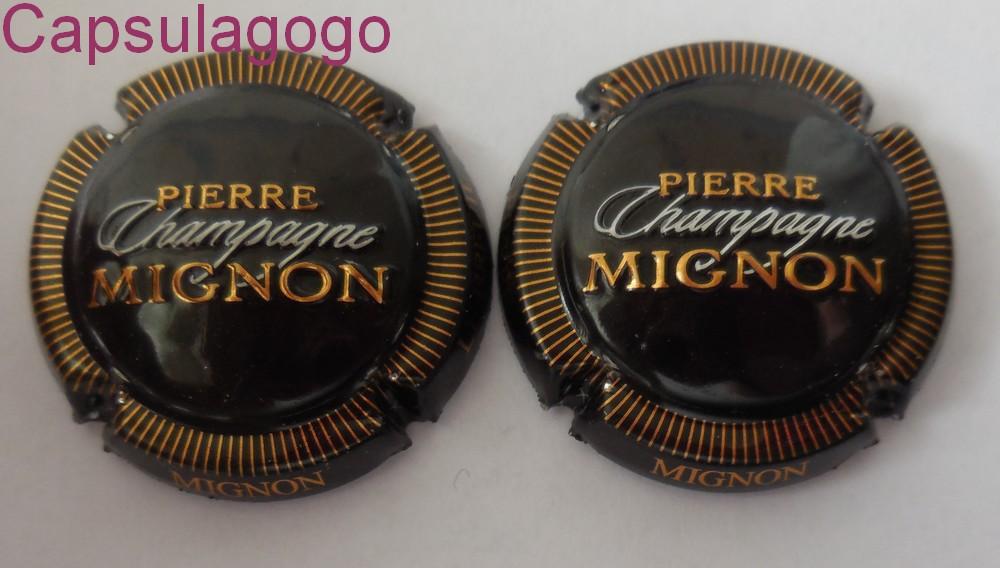 capsules de champagne pierre mignon