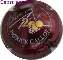 An 2000 p 000 138 callot patrick