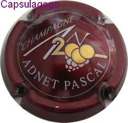 An 2000 p 000 142 adnet pascal