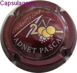 An 2000 p 000 224 adnet pascal