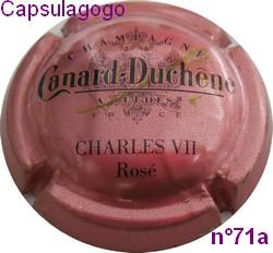 Cc 001 028 canard duchene n 71a