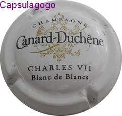 Cc 001 079 canard duchene