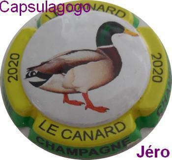 Jn 000 360 jero canard