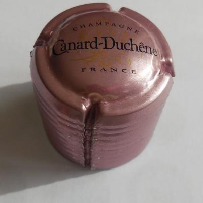 Lot de 10 Capsules Canard Duchêne  n°75e